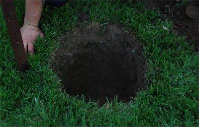 Faire la plantation d 39 un arbre - Creuser des trous pour poteaux de cloture ...